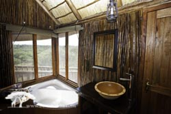 Family Tree House Ensuite Bath
