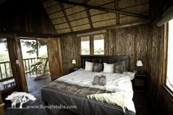 Tree house with king beds