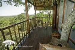 Tree house verandah